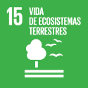 S_SDG goals_icons-individual-rgb-15